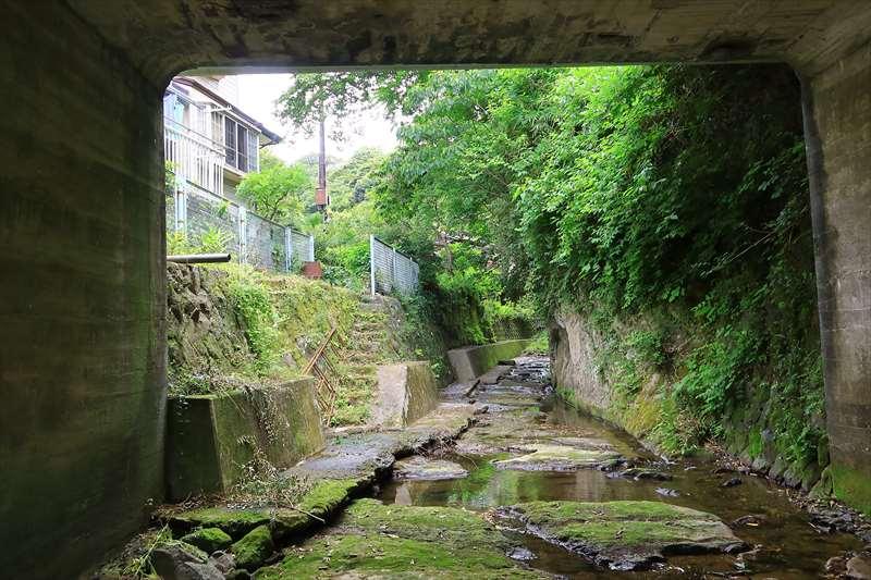 橋の下から撮影