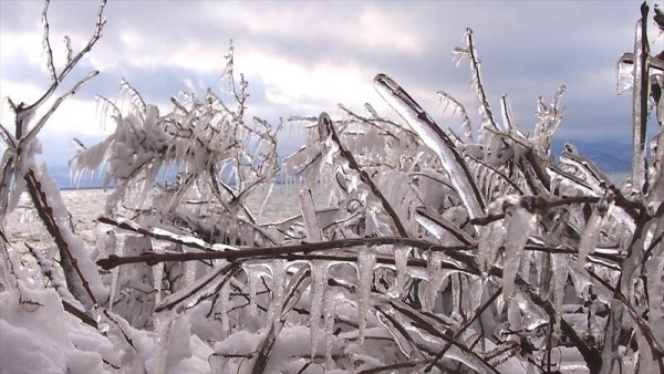 猪苗代湖 しぶき氷