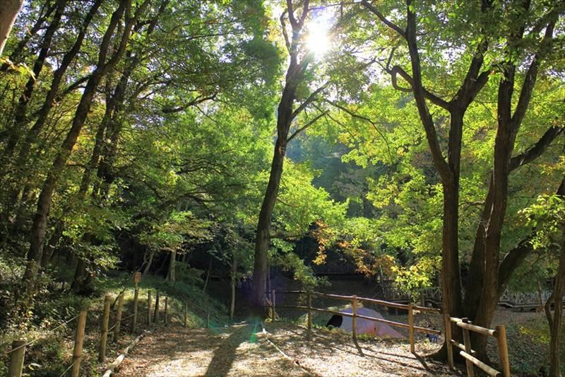 あけぼの子どもの森公園 ムーミン谷