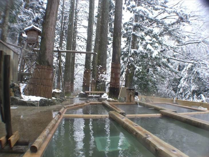 石川 山中温泉 花つばき