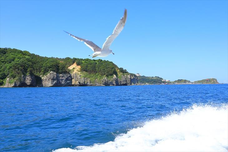 小樽海上観光船 あおばと からの風景