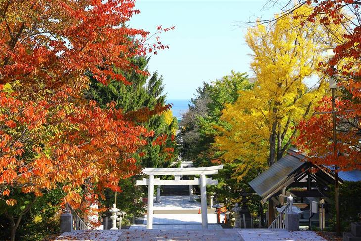 住吉神社からの風景