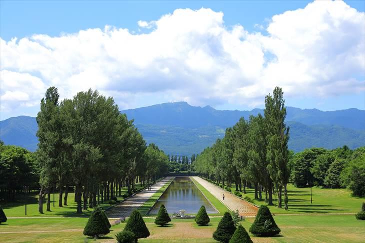 前田森林公園とポプラ並木